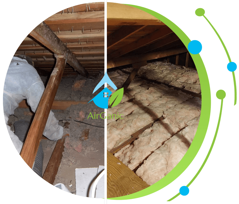 Seattle Crawl Space Cleaning  |Airganic