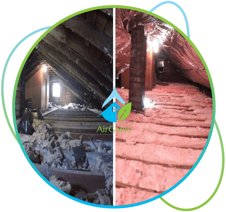 Seattle Crawl Space Inspection |Airganic